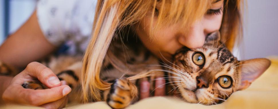 Companheiros divertidos, carinhosos e fofos, os pets fazem bem para a saúde. Foto: Freepik